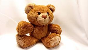 bear-678607_640