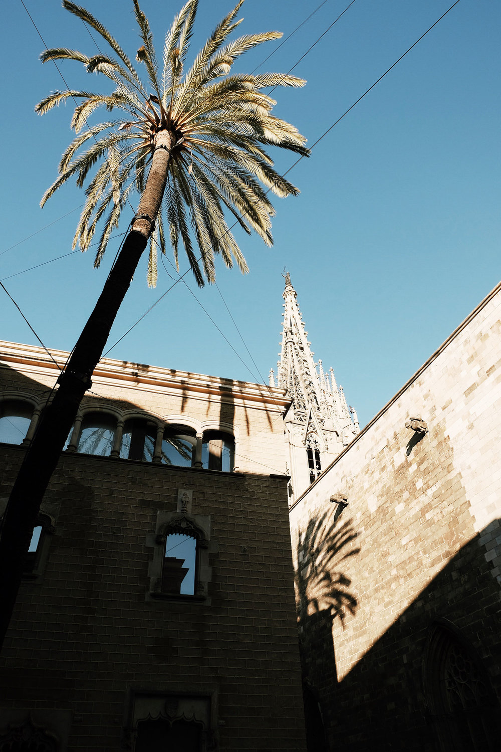 Carnet Sauvage - Blog voyages Barcelone, city trip guide, visiter le barrio gotico, plaza real