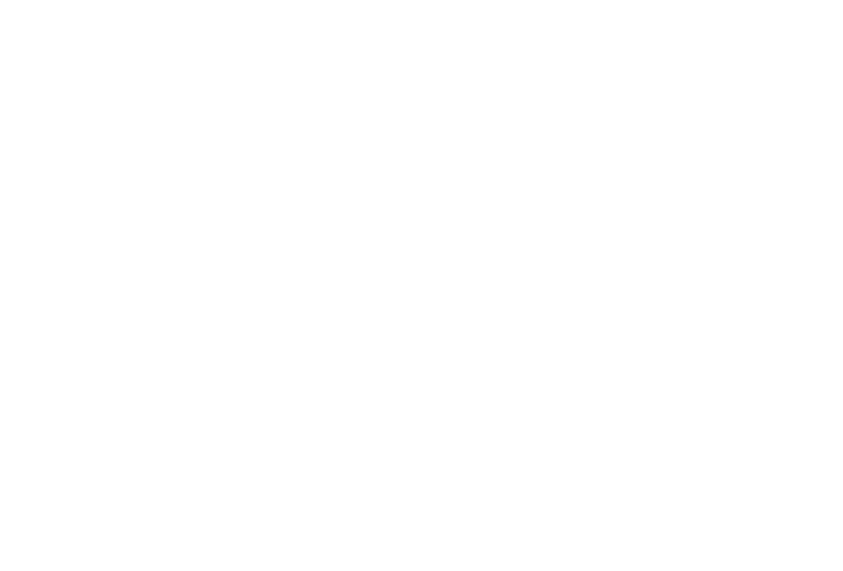 JEROME BAILEY JR.