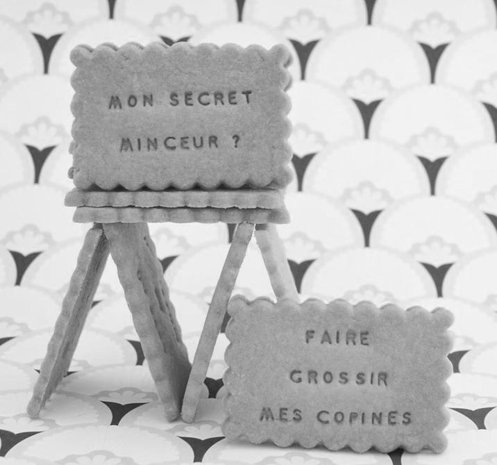 mon-secret-minceur-shanty-biscuits.png
