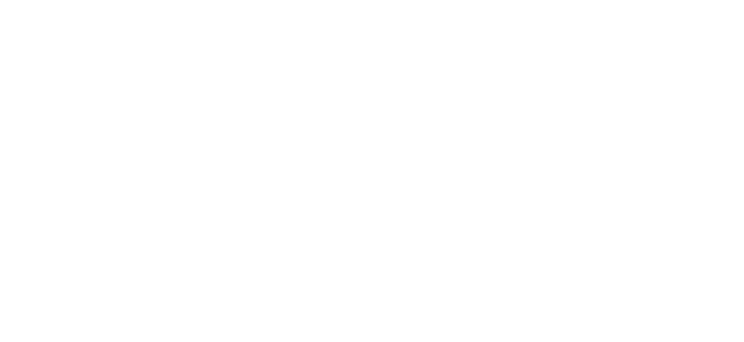 Bobby Mahoney and the Seventh Son