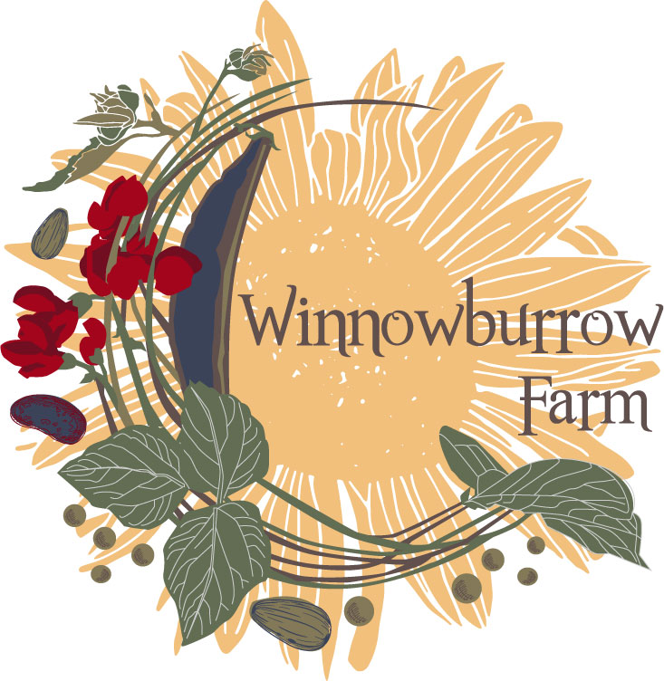 WINNOWBURROW FARM - LOGOA sustainable, chemical-free and regenerative farm proudly producing cut flowers, herbs, mushrooms, eggs, and nutrient-dense heirloom produce.
