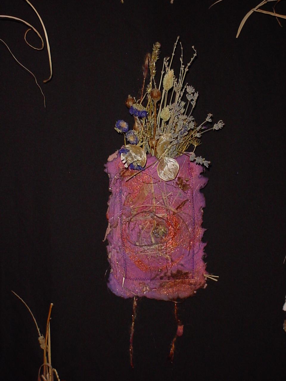 purple-pocket-lunaria-good.jpg