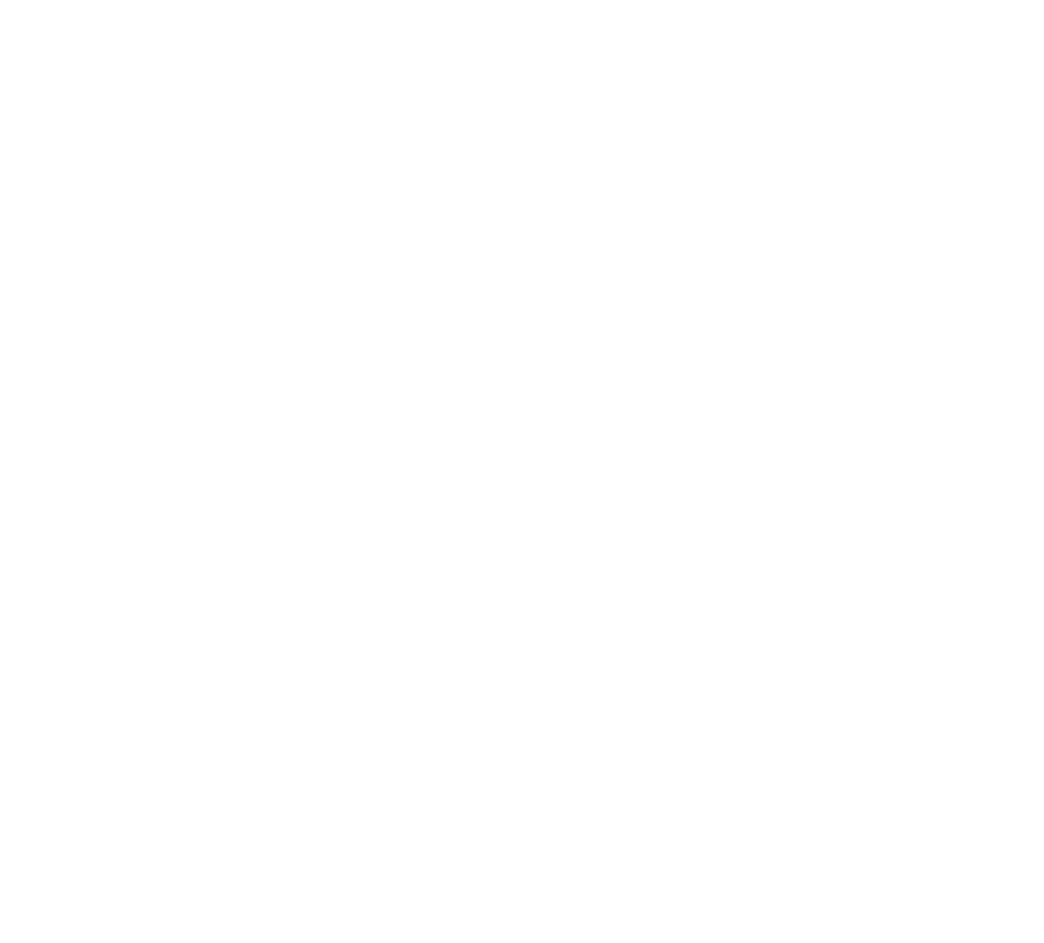 Wax Wings Brewing Co.