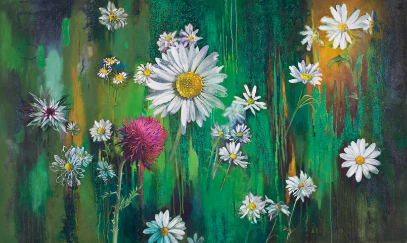 Daisies and Thistles - Montana