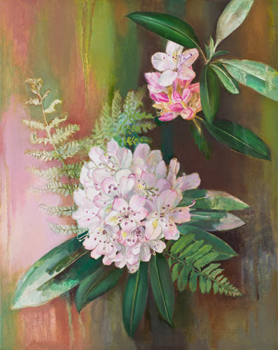 Rhododendron and Ferns