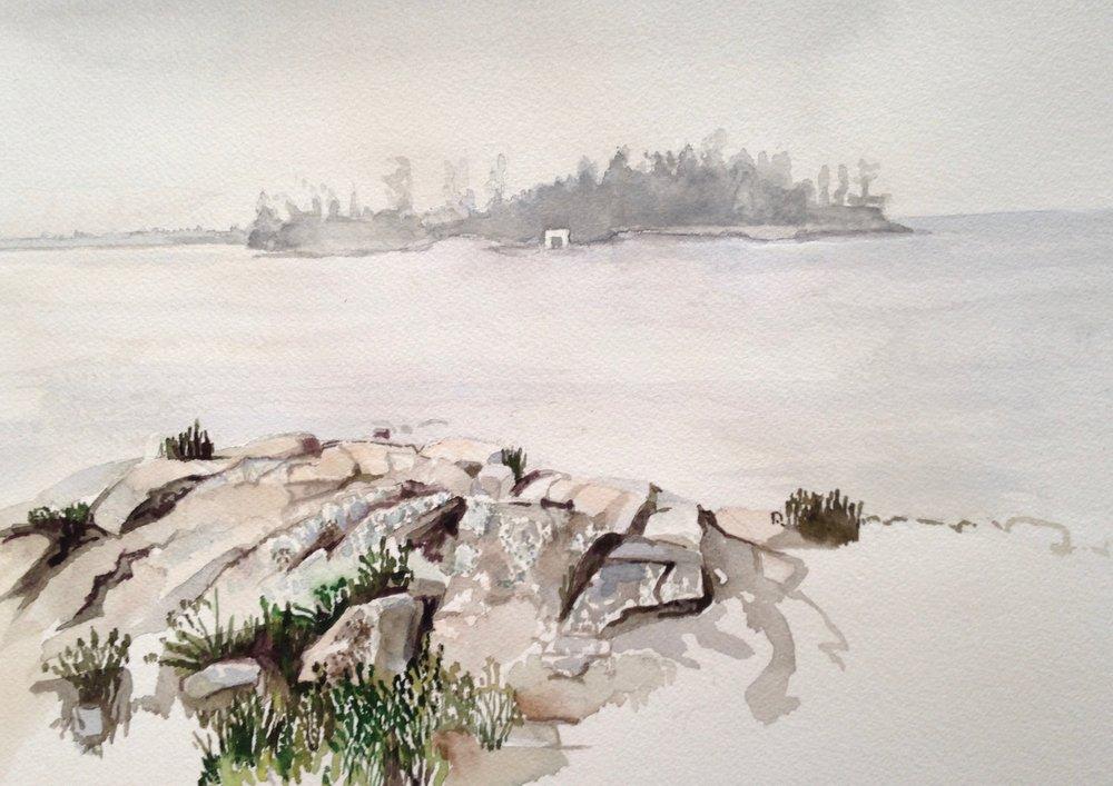 Wild Goose in Fog, 10 x 14 inches, 2017