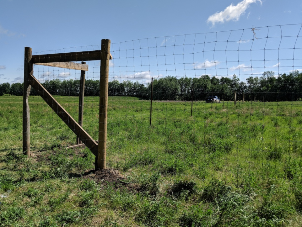 - The corner fencing along the north-west side
