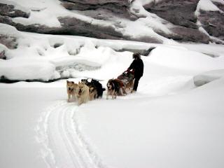 59-remote-wilderness-dog-sledge.jpg