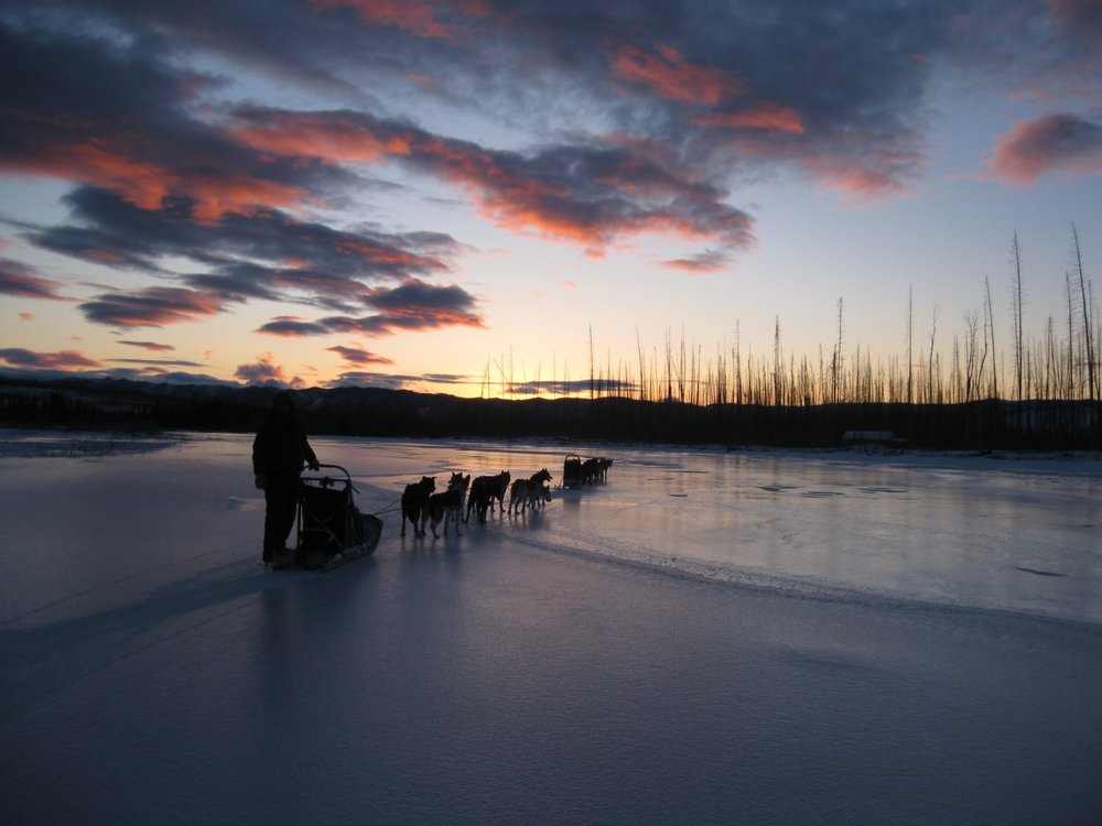 Remote wilderness Eagle, Alaska, Yukon River adventure