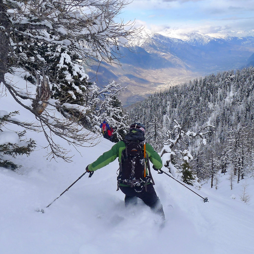 Great tree skiing in the Italian Alps.jpg