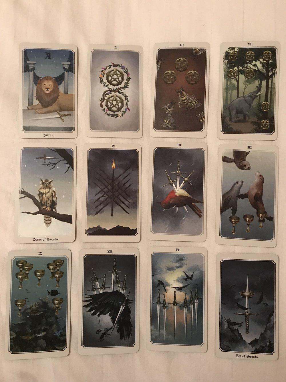 Deck is the Anima Mundi Tarot by Megan Wyreweden,  www.thecreepingmoon.com