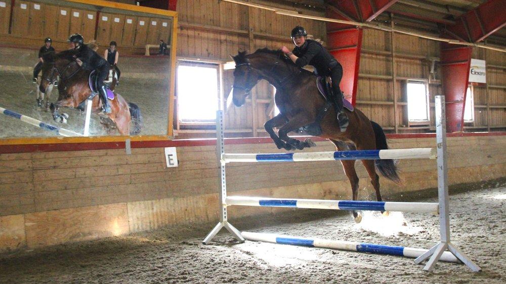 Ride- og køyresport - Vårt fokus er at både du og hesten skal få allsidig trening og at samspelet mellom deg og hesten skal utviklast gjennom god undervisning og forståing av ryttaren/kusken sin innverknad på hesten. Undervisninga blir retta mot konkurranse i løpet av året.