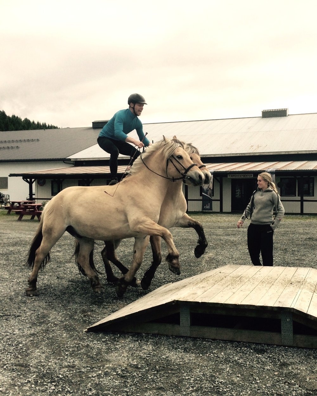 - Lærar hestelinjene, bu og fritidslinje og prosjektansvarlegTilsett sidan 2017Utdanning/erfaring:Yrkessjåfør i 13 år, har dreve med hest sidan 1985. Kusk, rytter, allsidig hestemann.Hobbyar/interesser:Gå i fjellet, koselege heimekveldar saman med familien.