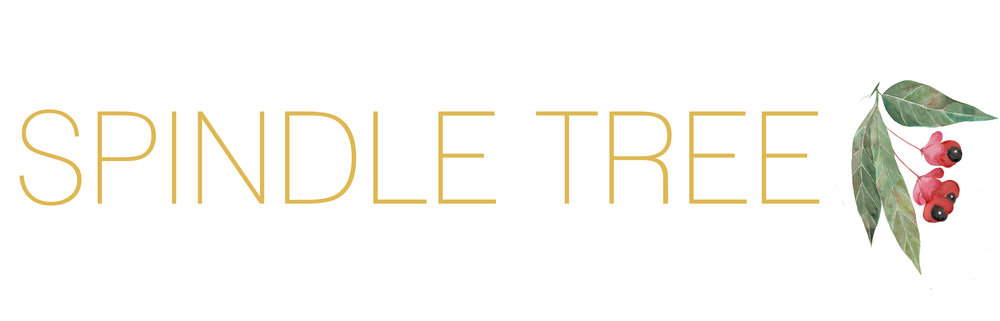logo for outside.jpg