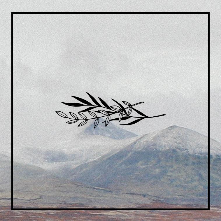 Rural Sounds Logo