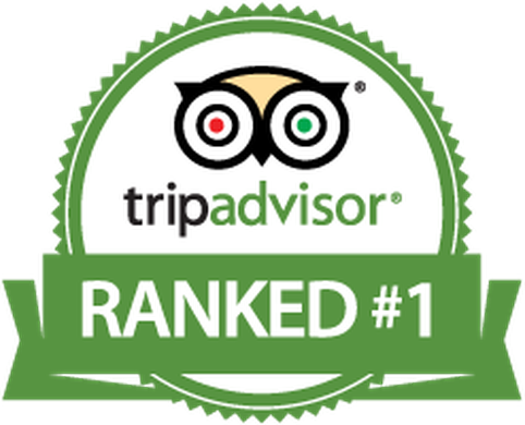 Trip Advisor Ranked Telluride Outfitters #1