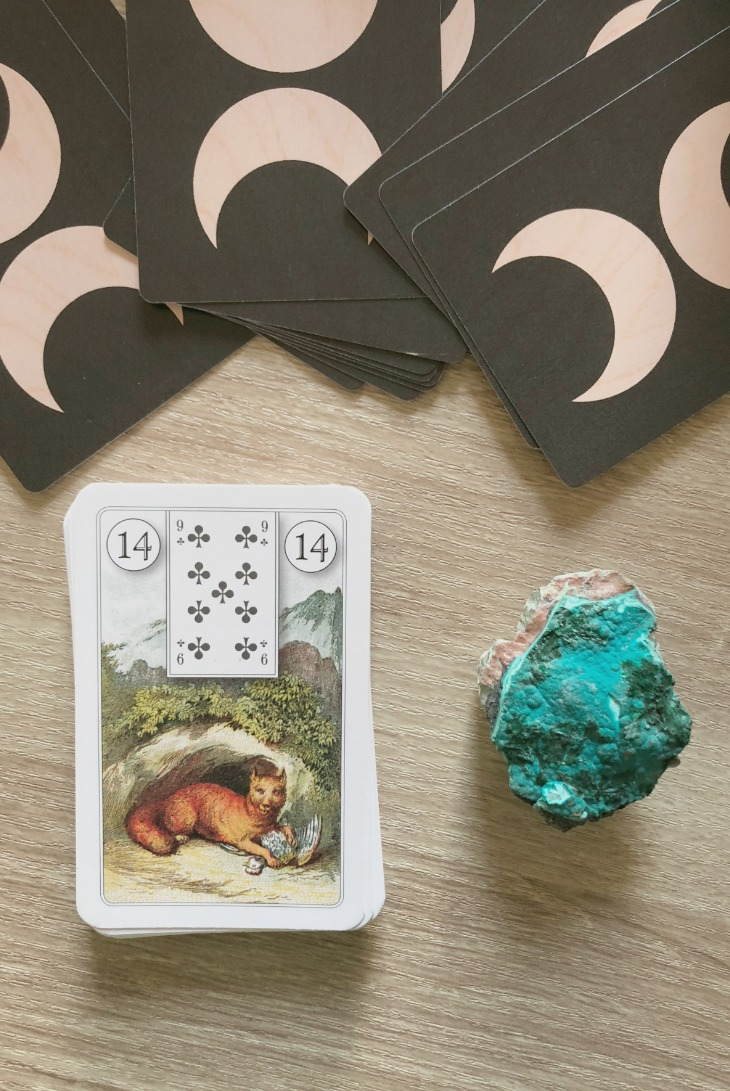 Lenormand Fox card meanings and interpretations. Learn how to read the Lenormand Fox card for general, love, business, money, health and other types of readings. In Lenormand decks, Fox is a card which represents cunningness in relationships.