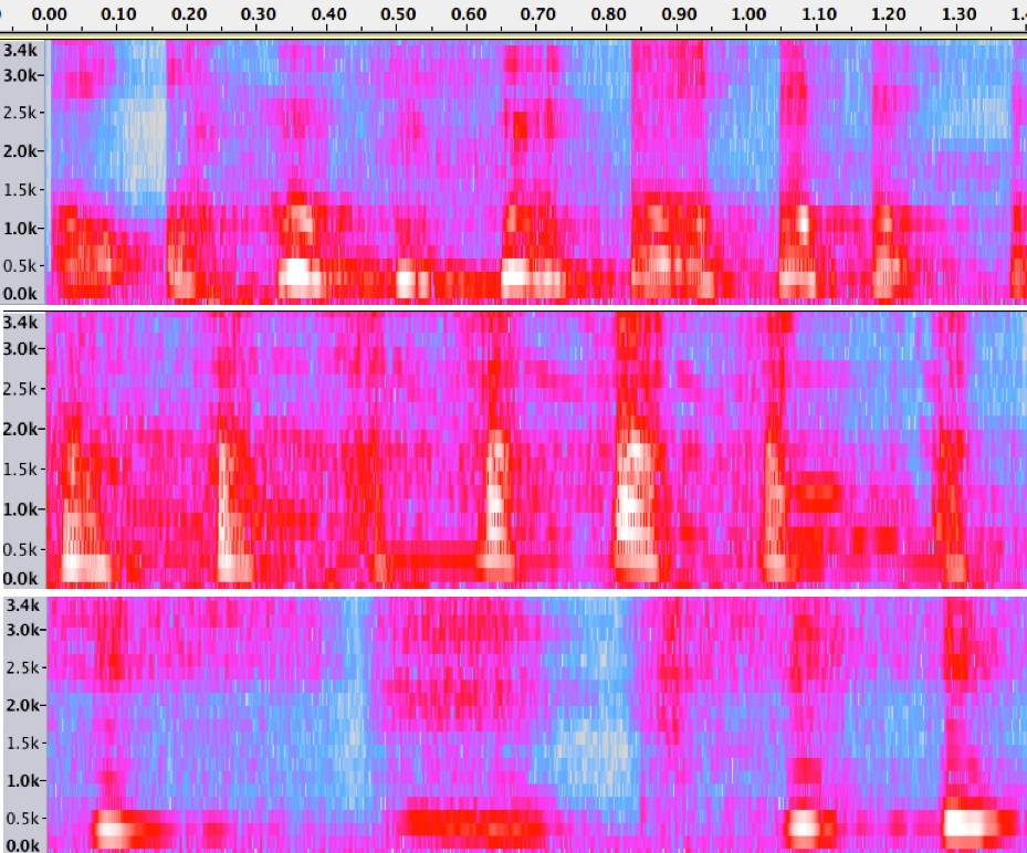 Spectrograms of 3 spontaneous laugh samples produced by participants in one of our studies (Wood, in prep). Notice the differences across the laughs—laughter takes many forms!