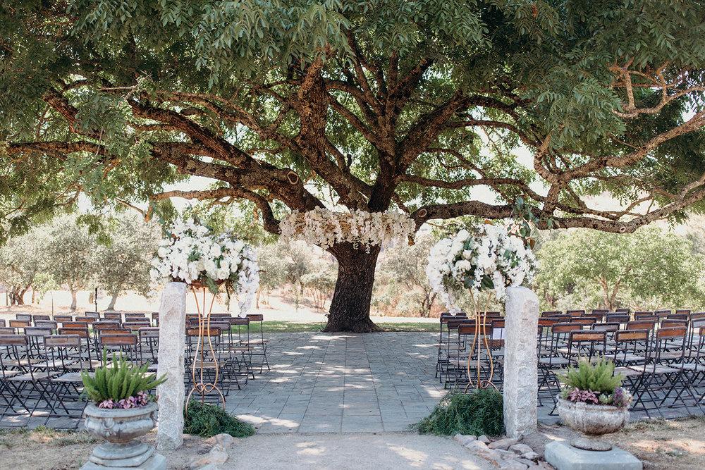 0000_wedheader_Cemily-and-seb-napa-wedding-525.jpeg