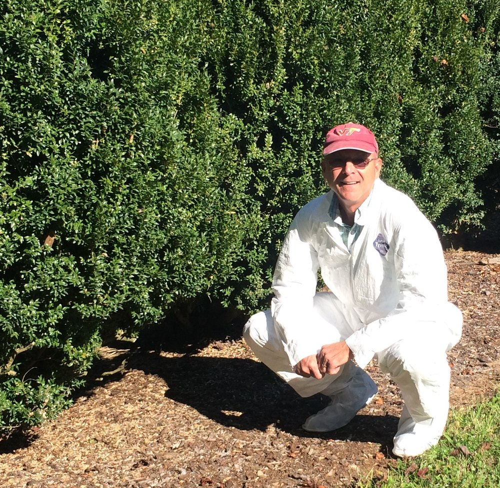 Bennett Saunders learning a new pruning technique to combat Boxwood Blight.