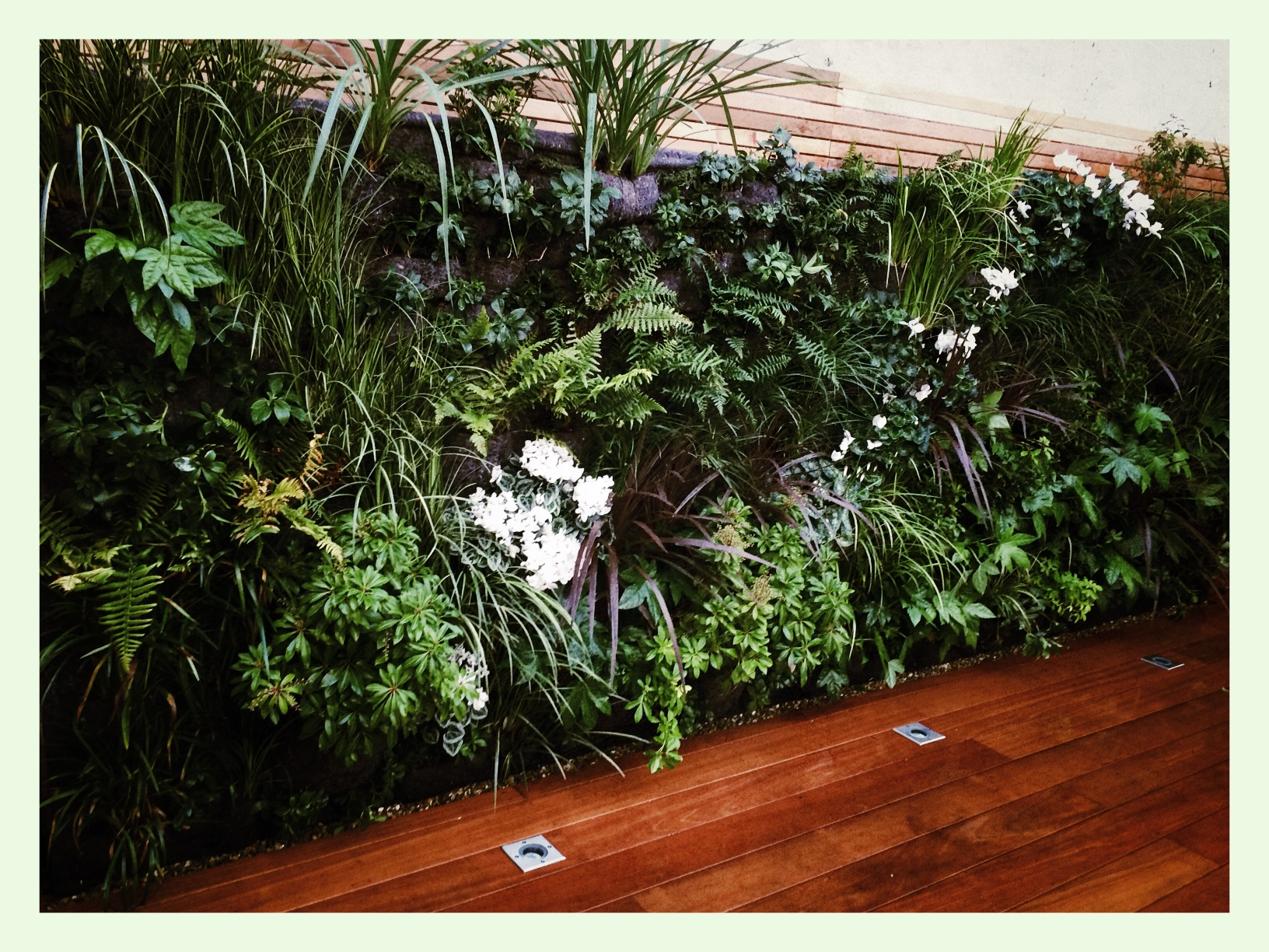 Living wall SW2