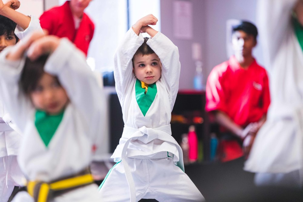 Karate Classes for Callahans Karate Martial Arts Classes for Kids Ages 3 to 5 years old in Bedford MA Little Dragon.jpg