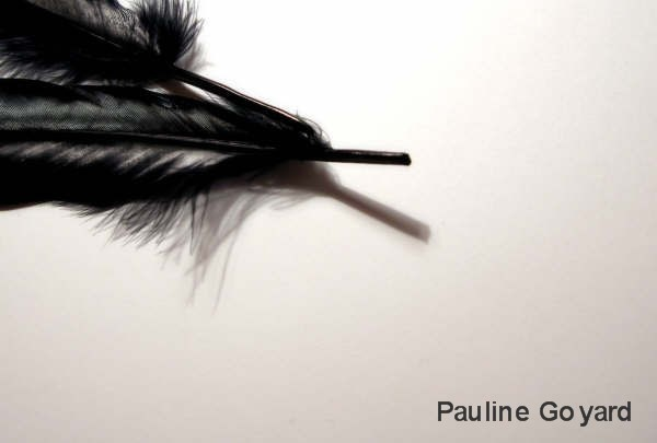 I spent 3 hours one night photographing a feather, trying every angle possible, for absolutely no other reason that I wanted to