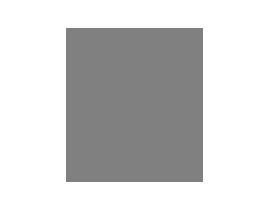 Logo Big 5.png