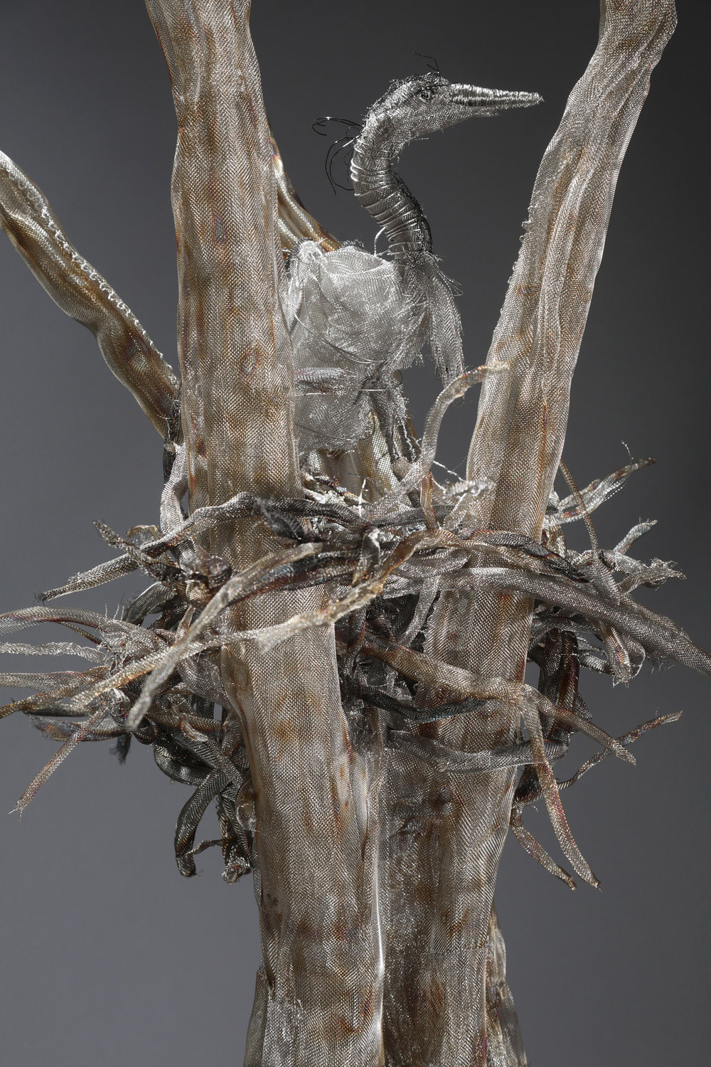 """""""Rooted Dependence"""" (detail)"""