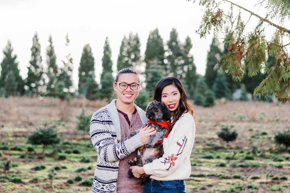 Portland Oregon Christmas tree farm engagement photos