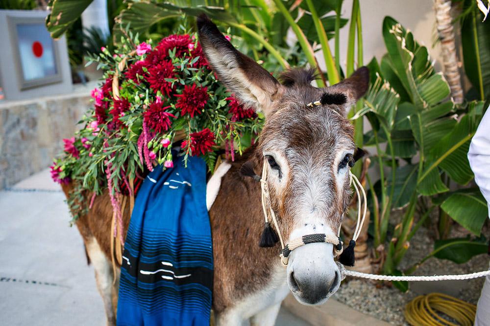 DESTINATION-WEDDING-PLANNER-CABO-MEXICO-LUXURY-EVENT--40.jpg