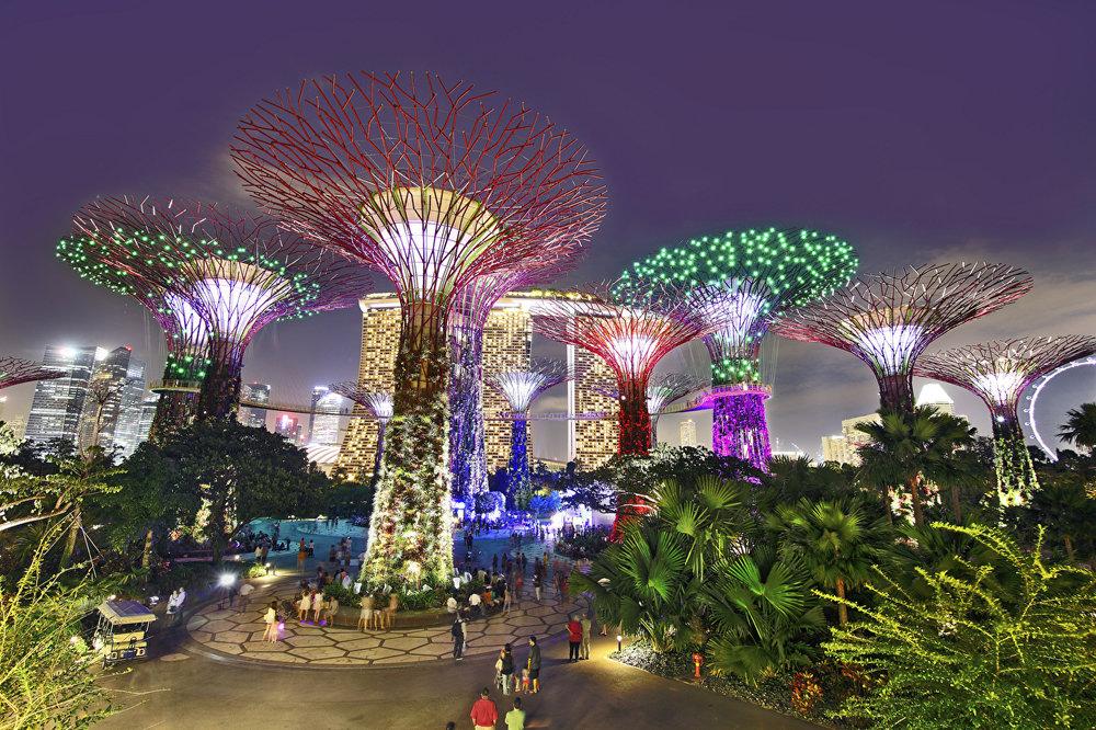 Singapore_Parks_Gardens_484020.jpg
