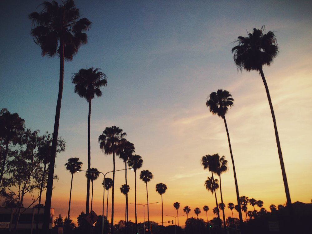 How to Search for AndRent A Home In Los Angeles -