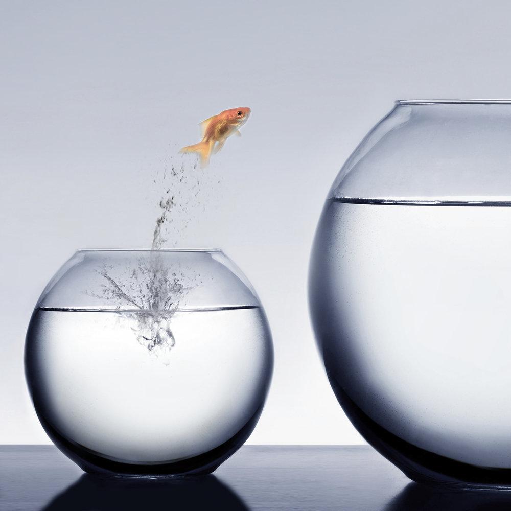 Chancen und Risiken 2019 - Ihre Destiny Analyse für 2019 hilft Ihnen Chancen und Möglichkeiten zu entdecken, um das Jahr und Ihre Ziele besser zu planen:1 – 1 ½ Stunden Beratung zu Ihren Chancen und Möglichkeiten 2019Empfehlungen für Zielsetzungen und Chancen, die es zu nutzen giltSensibilisierung für mögliche RisikenSchriftliche Zusammenfassung der AnalysePersönlicher KalenderKosten: 199.00 CHF incl. MWST