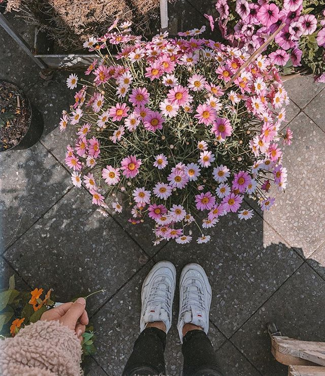 got myself fresh flowers on the way home from yoga this morning and loved how so many people I passed on the sidewalk looked at them and instantly smiled. spring makes things bloom everywhere, even in ourselves. 🌷☺️