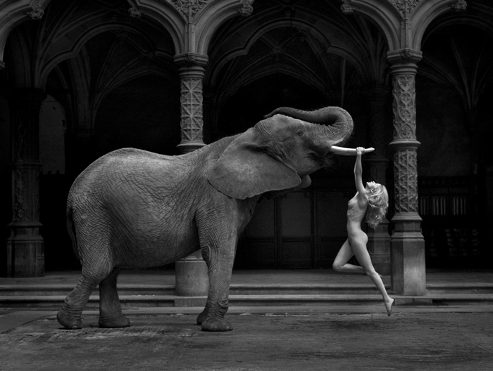 Marc Lagrange - Art nude photography par excellence. Sensuality and beauty, he managed to combine it all with absolute perfection.