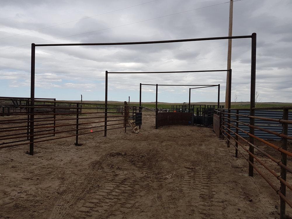 Ranch corrals