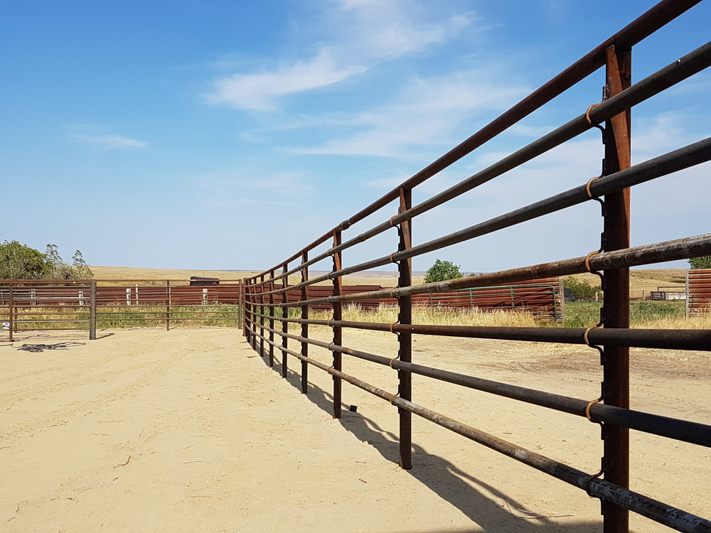 """An example of a corral fence using 2 7/8"""" (76mm) posts, 2 3/8"""" (60mm) top rail, and 1.9"""" (50mm) main rails. The rails are attached with a clip."""