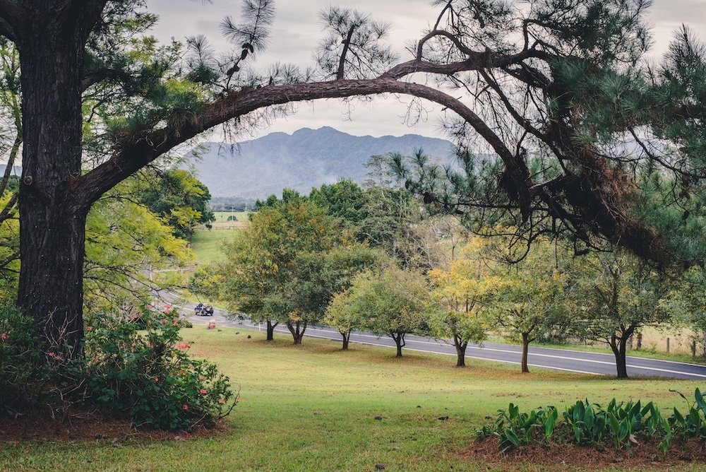 Bellingen Valley Image Eileen and Michael Moore Couples Counselling.jpg
