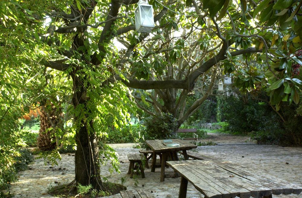 angolo delle magnolie.jpg
