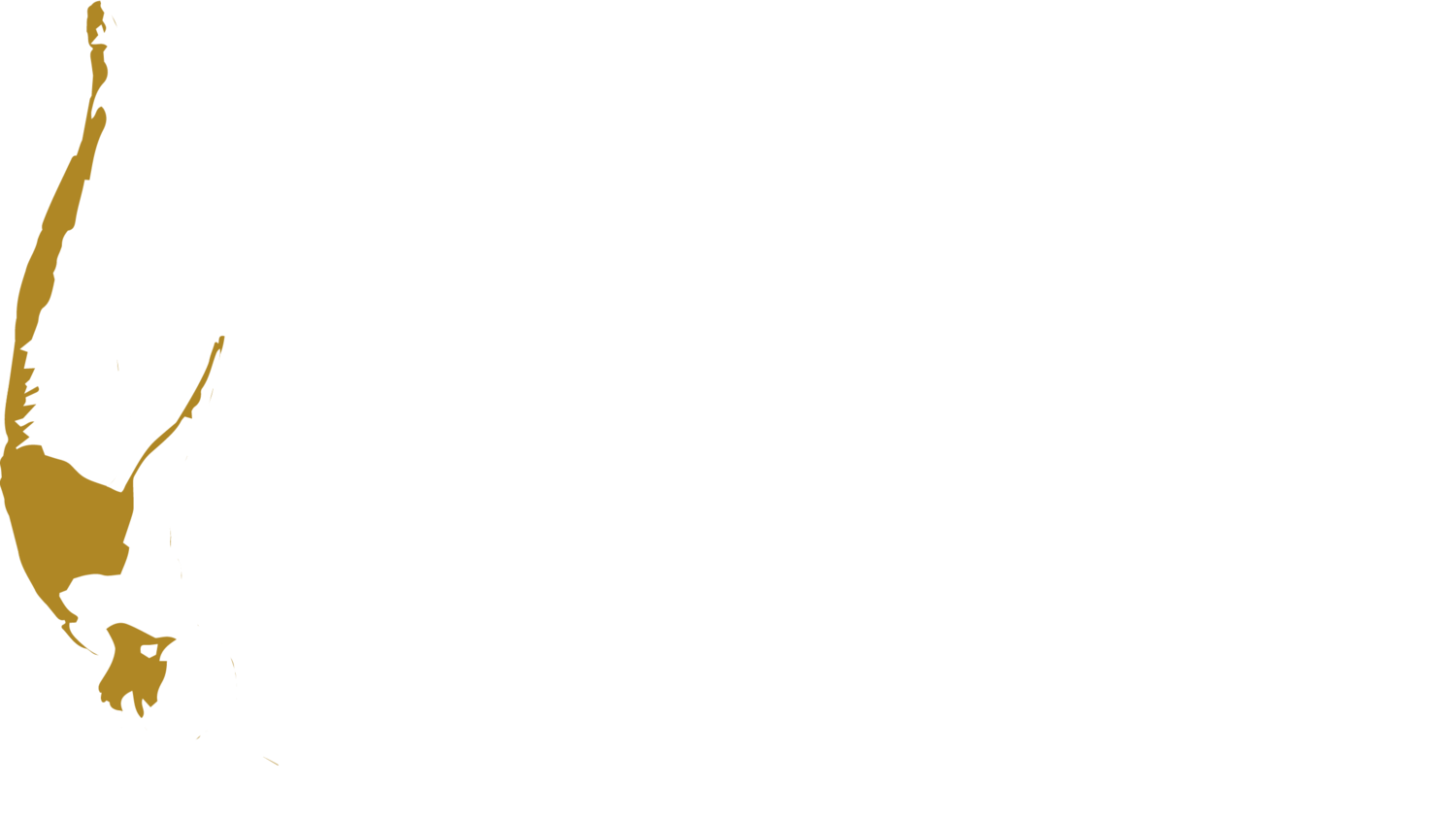 More Life Adventures