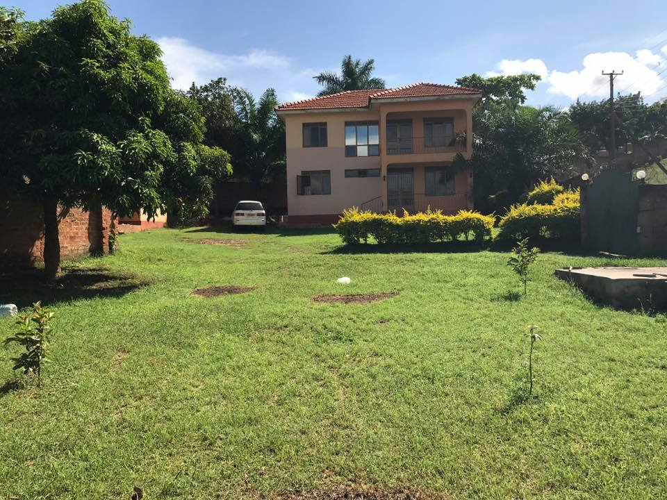 Our new shelter located in Kampala, Uganda