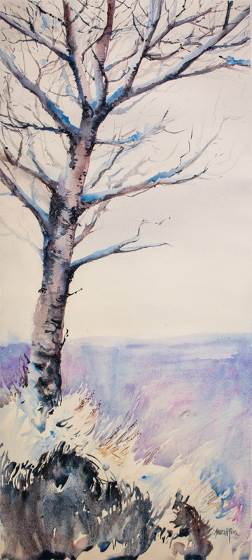 Silver Valley Sentinel 13 and quarter by 30 inches watercolour by Angela Fehr 600w