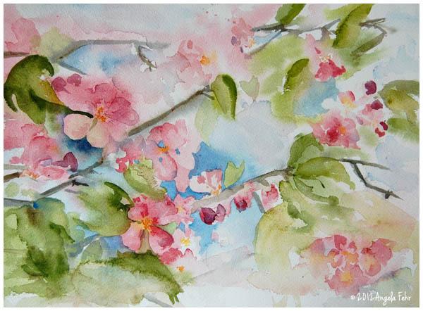 apple-blossom-sketch.jpg
