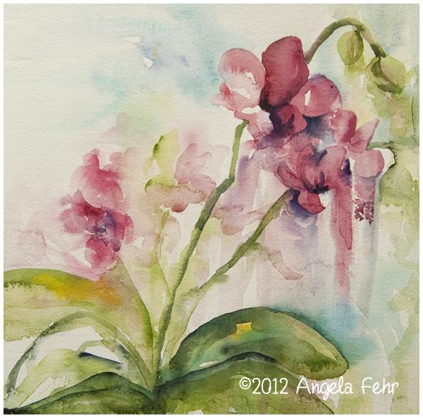 orchid-sketch.jpg