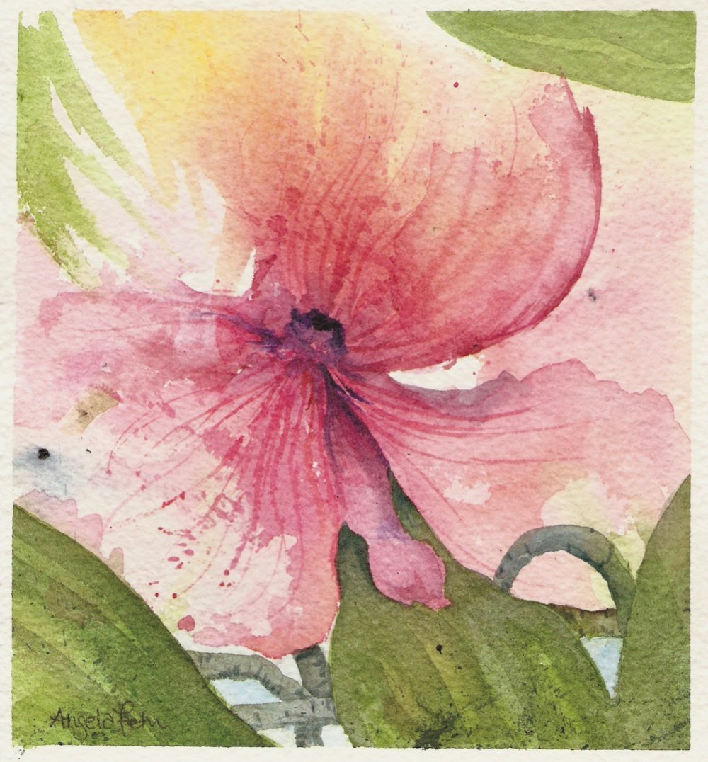 orchids-6inch.jpg