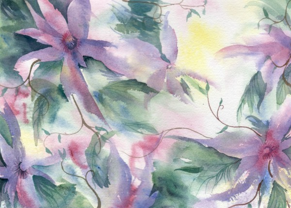 expressly clematis
