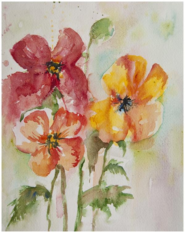 Poppy Trio watercolour sketch | Angela Fehr