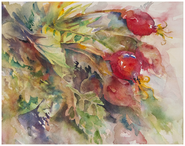 """Withered"" watercolour painting (rose hips) 